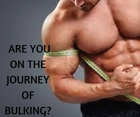 ARE YOU ON THE JOURNEY OF BULKING_